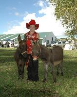 Donkey 13